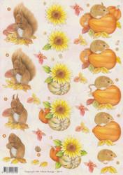 Voorbeeldkaarten herfst eekhoorn 2619 (Locatie: 5555)
