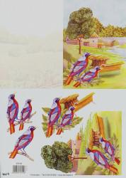TBZ knipvel vogels 571151 (Locatie: 4646)