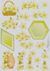 Fleur knipvel bloemen E4 (Locatie: 5848)