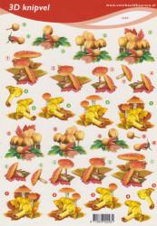 Knipvel paddenstoelen 2293 (Locatie: 2508)