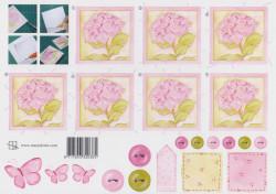 Marjoleine knipvel bloem roze 85 (Locatie: 2771)