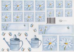 Marjoleine knipvel bloemen (Locatie: 0805)