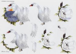 Wekabo knipvel zwaan 602 (Locatie: 2905)