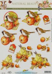 Doe Maar knipvel vogels 11053-324 (Locatie: 5941)