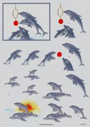 Hoca knipvel dolfijn 242 (Locatie: 1306)