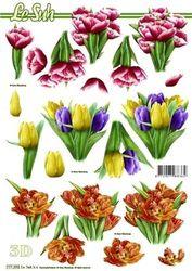Le Suh knipvel bloemen 777 392 (Locatie: 5530)