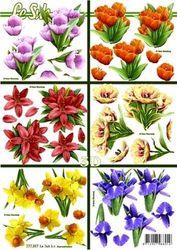 Le Suh knipvel bloemen 777397 (Locatie: 6727)