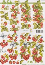 Le Suh knipvel fruit 8215302 (Locatie: 2630)