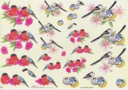 Mireille knipvel vogels E635 (Locatie: 4615)