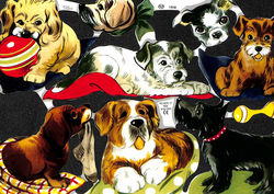 Poezieplaatje Honden MLP1608 (Locatie: MP058)