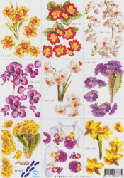 Le Suh knipvel bloemen nr. 821593 (Locatie: 1532)