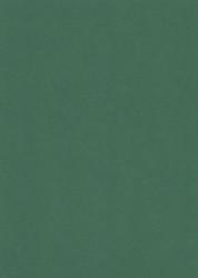 A5 karton donkergroen 11
