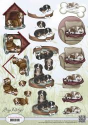 Amy Design knipvel Animal Medley CD10452 (Locatie: 2445)