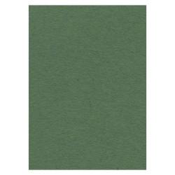 Card Deco karton donkergroen (forest green), A4 (Locatie: 1573)