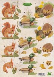 Klaver-vier knipvel dieren 4151 (Locatie: 1246)