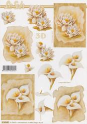 Le Suh knipvel bloemen 4169689 (Locatie: 6039)