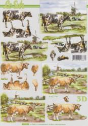 Le Suh knipvel koeien 8215199 (Locatie: 6738)