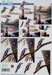 Le Suh knipvel vogels 777494 (Locatie: 2909)