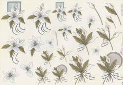 Mireille knipvel bloemen E175 (Locatie: 2403)