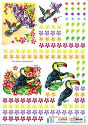 Olba vel dubbel vogels 2008-37 (Locatie: 6723)