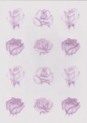 Pergamano rozen paars vellum nr. 61775 (Locatie: 1733)