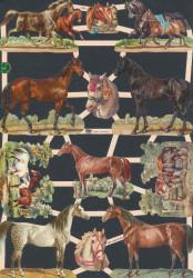 Poezieplaatjes paarden vintage (Locatie: MP095)