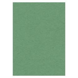 Card Deco karton A4 groen (Locatie: 0353)