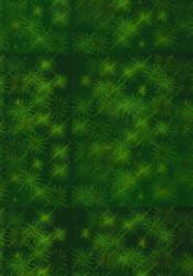 Holografisch karton A4 groen (Locatie: 1635)