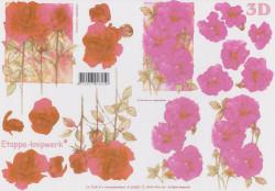 Le Suh knipvel bloemen nr. 4169459 (Locatie: 1624)
