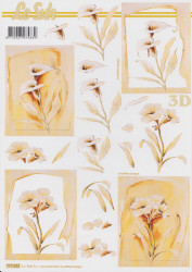 Le Suh knipvel bloemen nr. 777022 (Locatie: 2767)