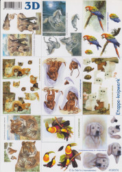 Le Suh knipvel dieren 4169374 (Locatie: 1709)