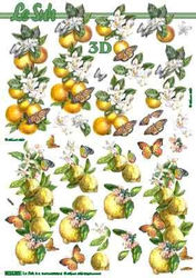 Le Suh knipvel vlinders 8215323 (Locatie: 2662)