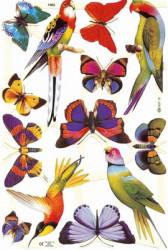 Poezieplaatjes Vogels en Vlinders 41601960 (Locatie: MP091)