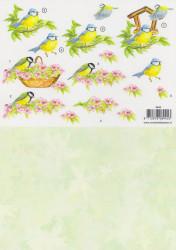 Voorbeeldkaarten knipvel vogel 8945 (Locatie: 2811)