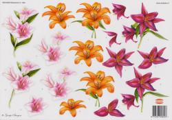 Wekabo knipvel bloemen 820 (Locatie: 2810)