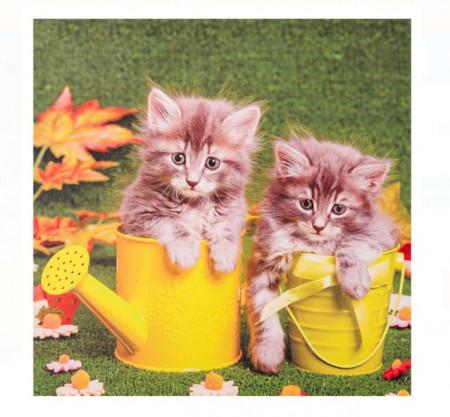 tablou canvas model pisicute