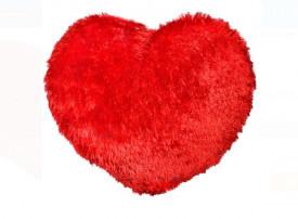 Perna decorativa - inima rosie
