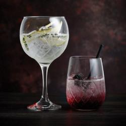 Pahar Gin Rococo 539ml G11099520
