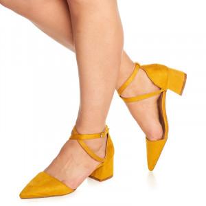 Pantofi cu toc mic gros Ambrosine