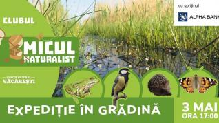 Expeditie in gradina - 3 mai 2019