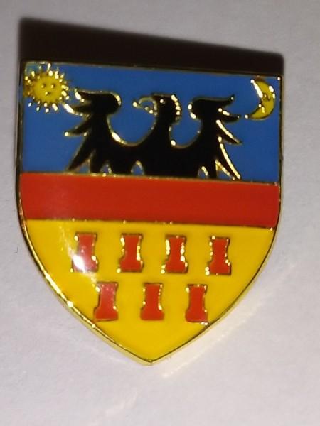 Poze Pins Transilvania A