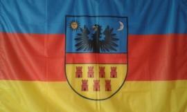 Poze Steag Transilvania Polyester 140cm X 90cm