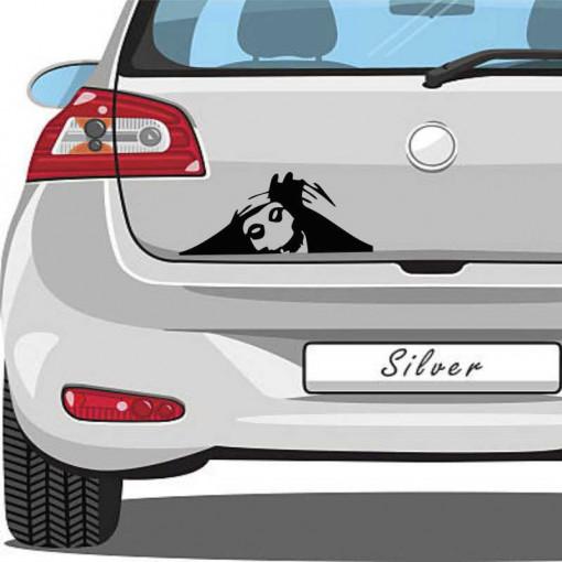 Sticker auto Watching You 1