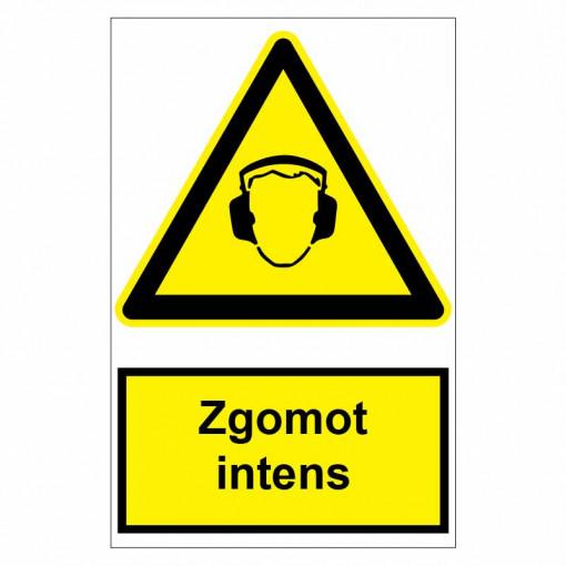 Sticker indicator Zgomot intens