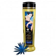 Shunga Erotic Massage Oil Seduction 240Ml