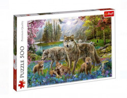 Puzzle 500 piese