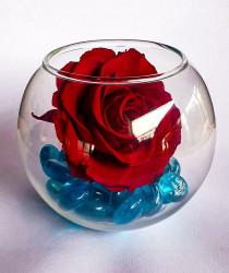 Trandafir criogenat XL - in bol de sticla