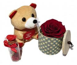 Trandafir criogenat XL, cu ursulet de plus cu sunet si sticluta mesaj
