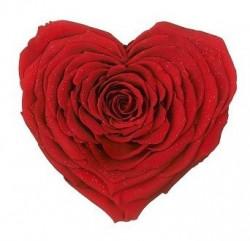 Trandafir criogenat XXL - inima rosie, cutie