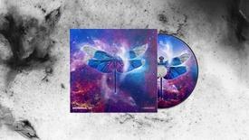 DOMNUL 11 - ALBUM